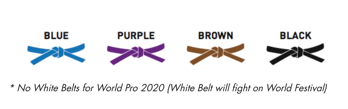uae-jiu-jitsu-federation-world-pro-2020-competition-regulations-20200130075232.png